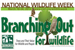 Branching out for Wildlife Seeks Volunteers