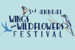 Wings and Wildflowers Festival