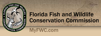 Florida scrub jay trail news for Florida fish and wildlife conservation commission