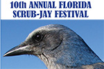 Scrub-Jay Festival, January 11, 2020